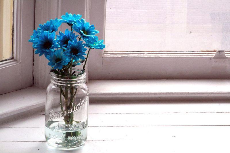 Blue floflos